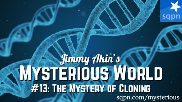 MYS013: The Mystery of Cloning