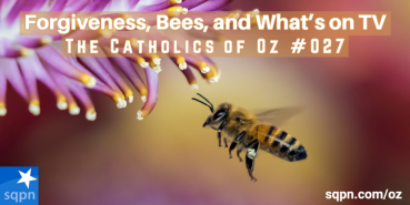 Forgiveness, Bees, and What's on TV